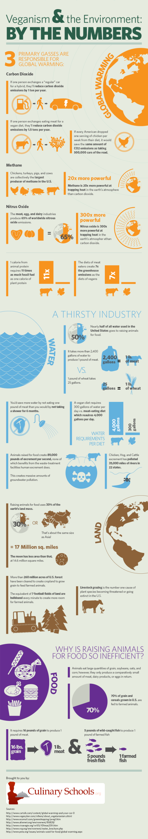 Vegan by the numbers